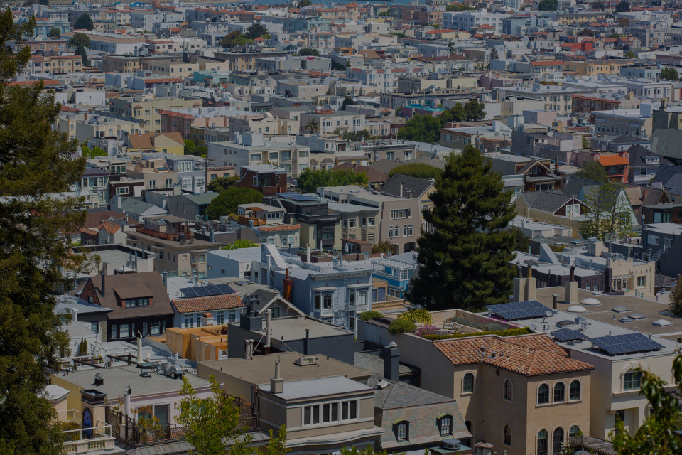 Cow Hollow, the luxury real estate hotspot in San Francisco - California