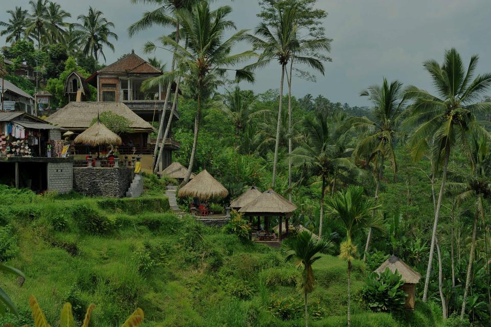 Ubud, the luxury real estate hotspot in Bali - Indonesia