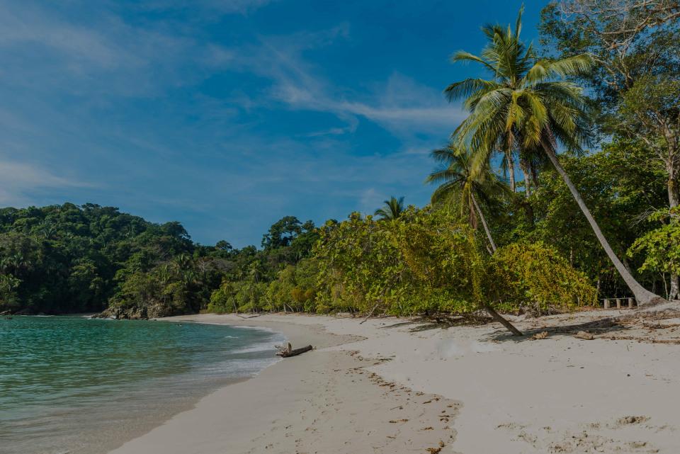 Manuel Antonio, the luxury real estate hotspot in Puntarenas - Costa Rica