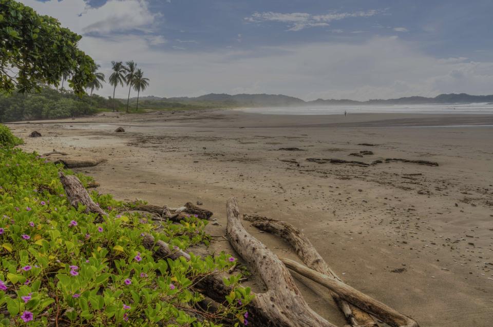 Nosara, the luxury real estate hotspot in Guanacaste - Costa Rica