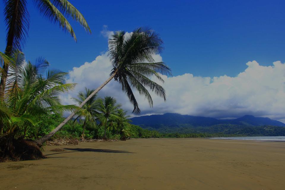 Uvita, the luxury real estate hotspot in Puntarenas - Costa Rica